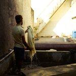 サンガネールの更紗工房02|インド旅行記05