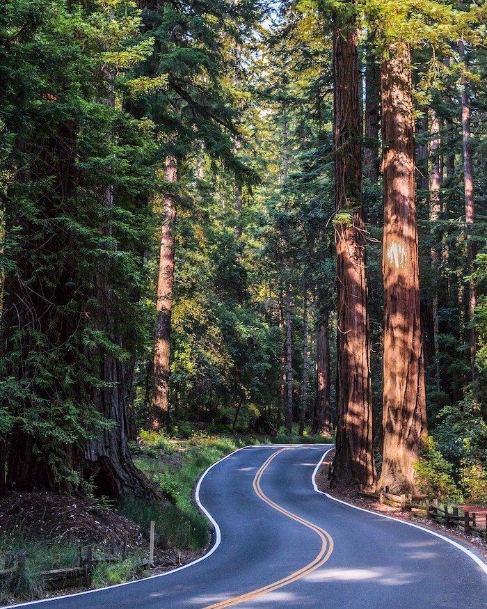 Skalkaho Highway