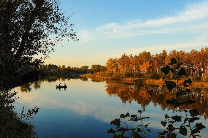 Pandapas Pond Blacksburg