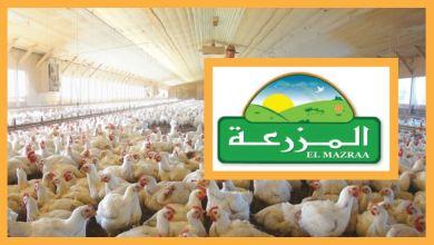 P0147 المزرعة تعتزم إنتداب أعوان واطارات