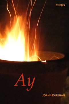 Ay by Joan Houlihan