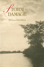 Storm Damage by Melissa Hotchkiss