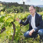 """Juan Manuel Casares (DO Ribeiro): """"Las alianzas entre productos gastronómicos y vinícolas reforzarían la imagen turística gallega"""""""