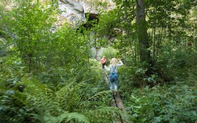 Dovrasjödalen – Örebros fineste naturreservat?
