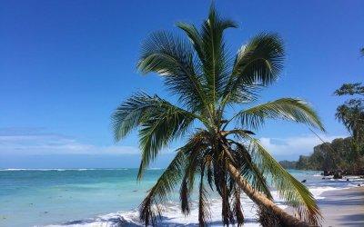 De 5 vakreste nasjonalparkene i Costa Rica
