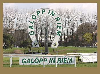 Galopp in Riem