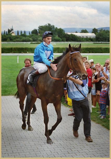La Blue Siegerin im Oettingen-Rennen