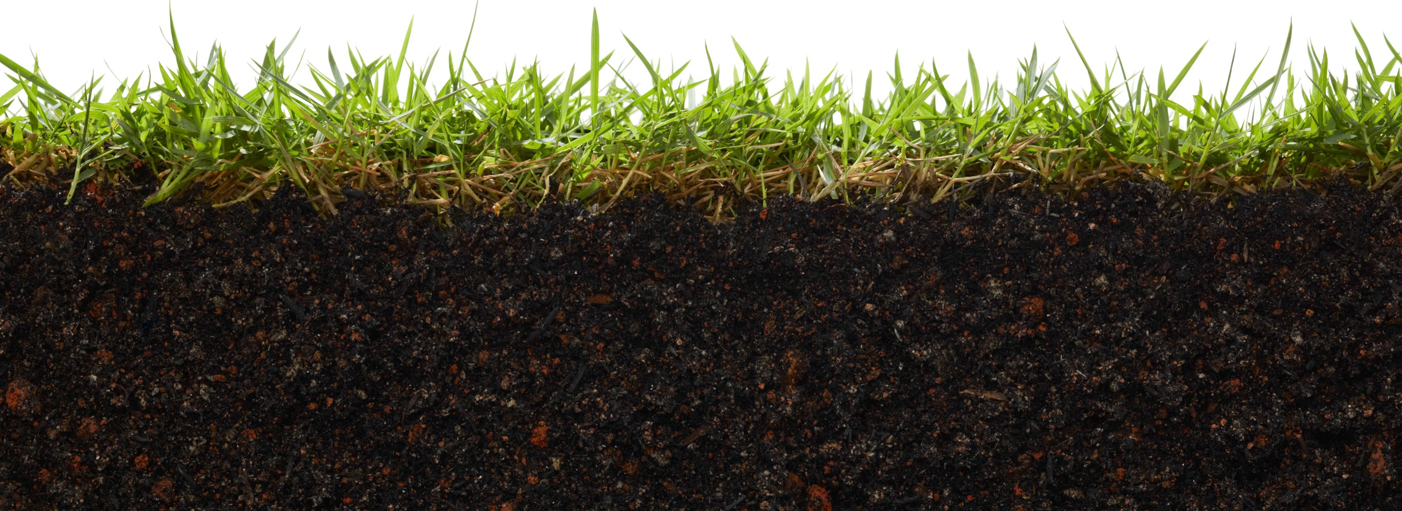 Understanding A Soil Testysis Report