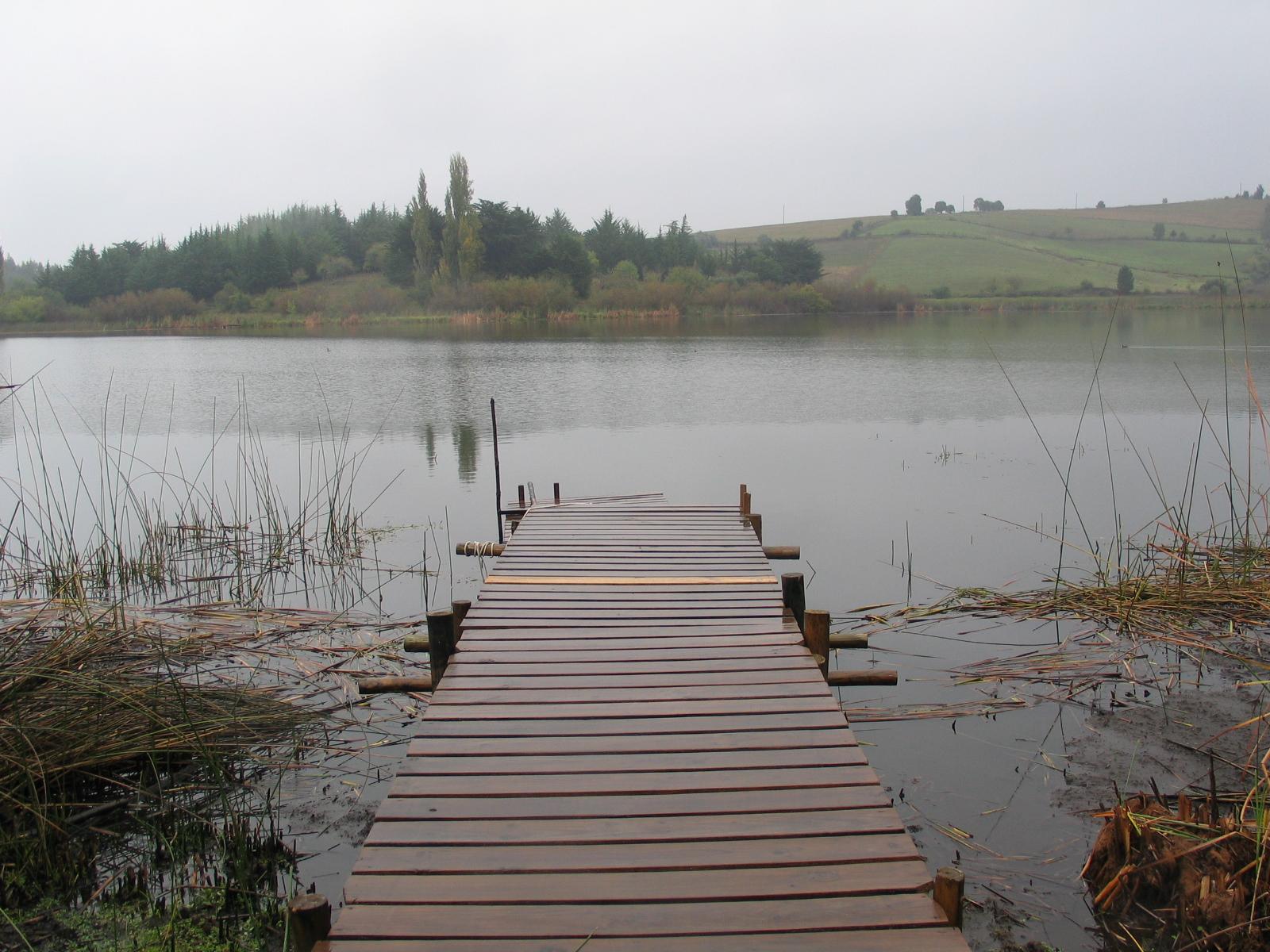 Laguna Las Flores, Tabasco
