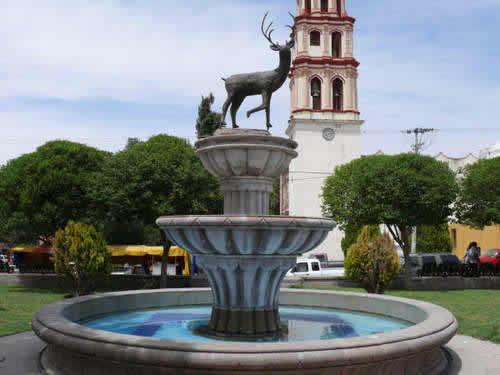 Venado, San Luis Potosí