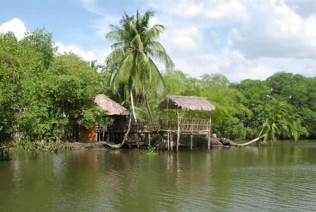 Pantanos de Centla (Tabasco)