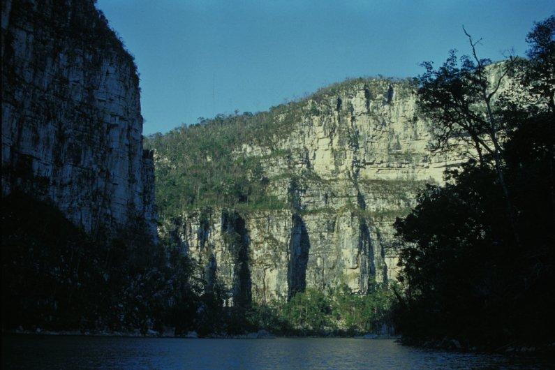 Selva El Ocote