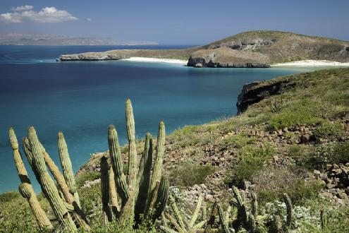 Turismo en las Islas del Golfo de California