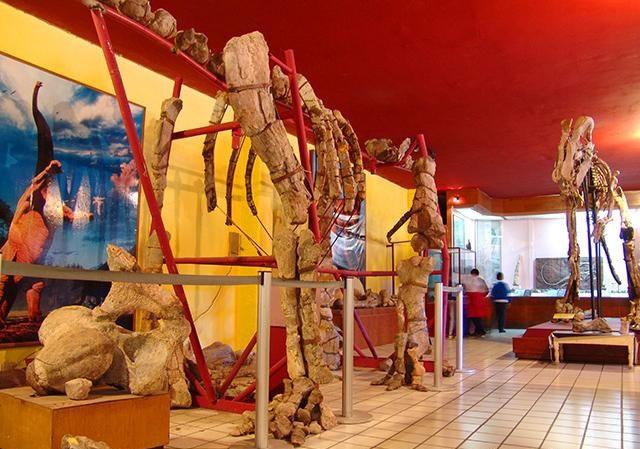 Museo de Paleontología, Chihuahua