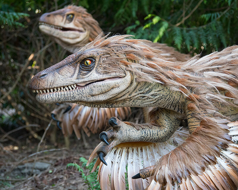 Dinosaurskoven er Knuthenborg Safariparks største investering nogensinde. Fra i morgen kan du komme helt tæt på Lollands svar på Jurassic Park. (PR-foto)