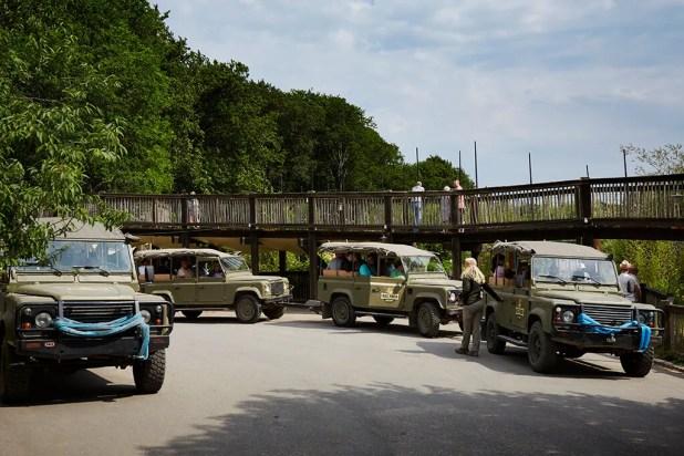 Klar til safari-tur i Land Rovere i Ree Park Safari.