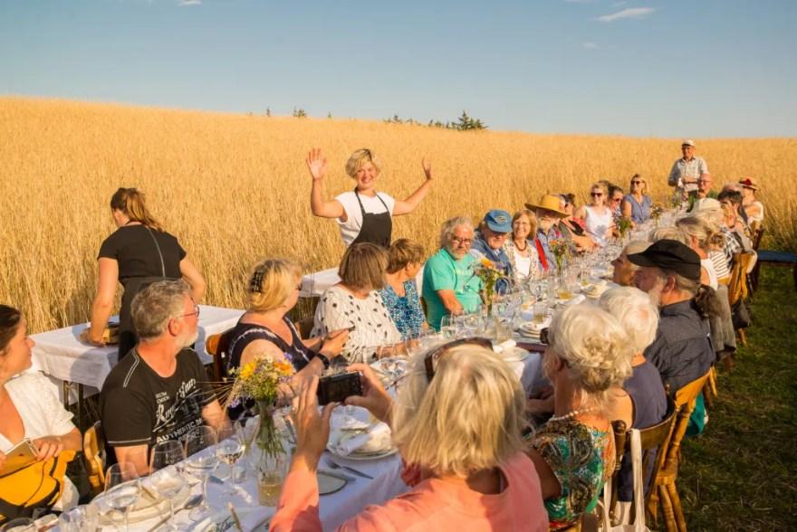 Fredag den 14. og søndag den 16. august 2020 kan man opleve Livø Middagen. En særlig langbordsmiddag, der serveres midt i naturen. (Pr-foto)