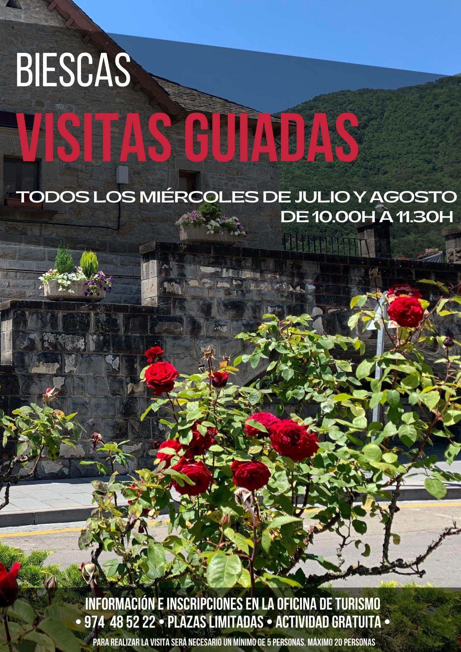 VISITAS GUIADAS BIESCAS