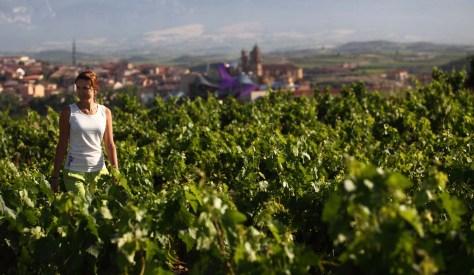 Entre villas y viñedos: el turismo de naturaleza es único en la Ruta del Vino de Rioja Alavesa