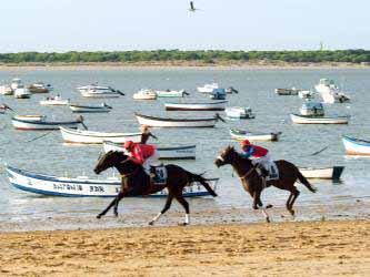 Carreras de caballos en la playa