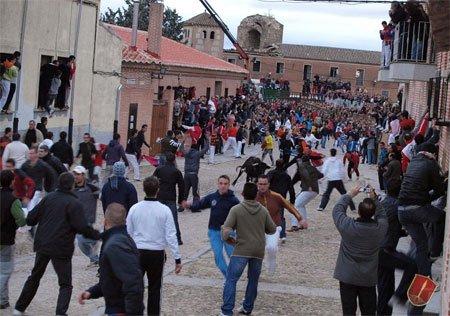 Fiestas de Valladolid 8