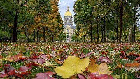 Basilica del sagrado corazon en Notre Dame University Indiana