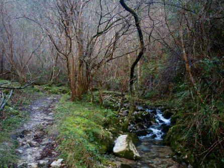 Sendero Cueva del Tinganón