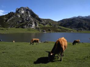 Lakes of Covadonga. Picos de Europa mountains.