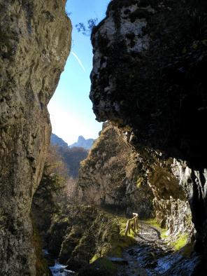 Hiking Asturias. Ruta del Alba
