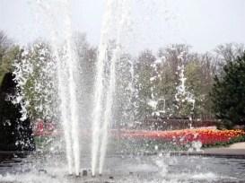 %name O parque das tulipas de Keukenhof, na Holanda