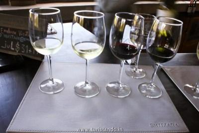 Vinicola Organica Emiliana Casablanca Chile 016 350x233 Vinícolas no Chile: Tour degustação na Emiliana