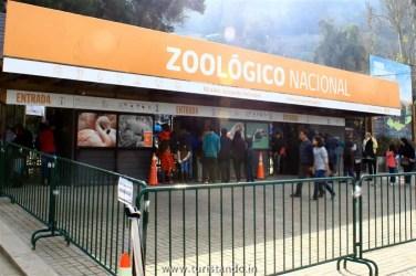 Turistando.in Chile Cerro San Cristobal Santiago 09 julho 2017 13h03 004 376x250 O Zoológico de Santiago no Parque Metropolitano