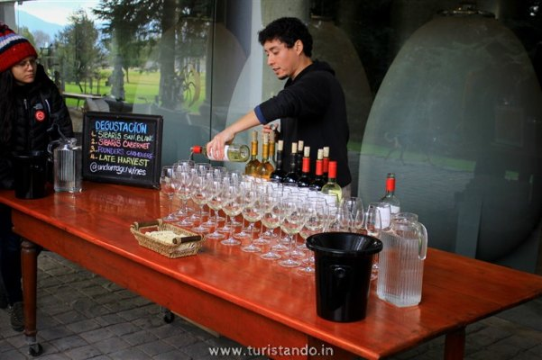 Turistando.in Chile Vina Undurraga Santiago 048 601x400 Tour degustação na Vinícola Undurraga em Santiago por conta própria