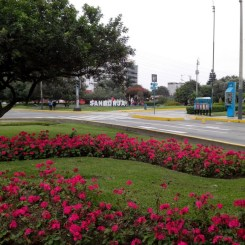 San Borja Lima