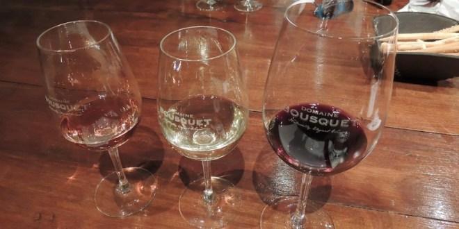 Vinícolas em Mendoza e a cultura do vinho Malbec