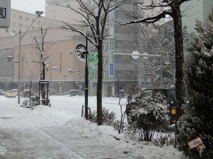 nagano-japao-jigokudani-15