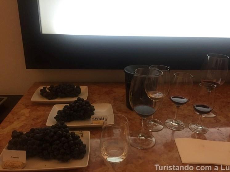 tipos de uva na vinícola cartuxa