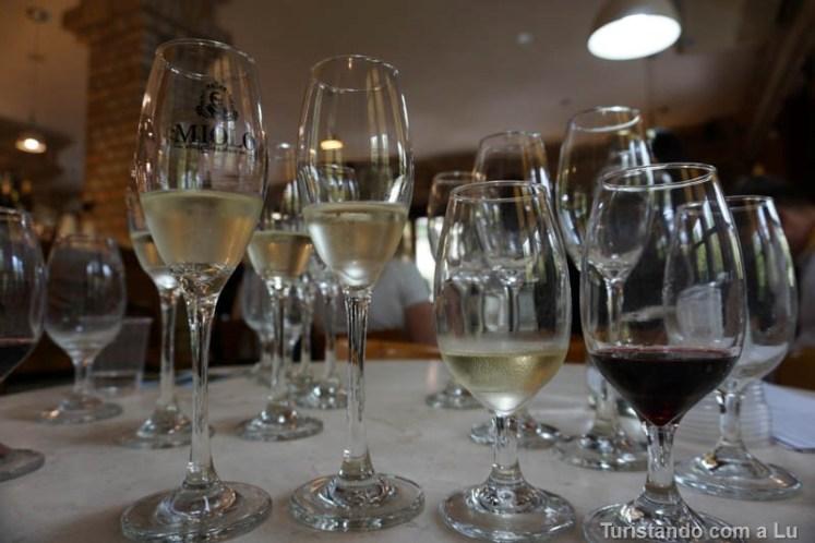 Roteiro e dicas para conhecer o vale dos vinhedos na Serra Gaúcha