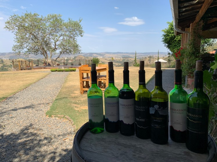 o que fazer em amparo vinícola terrassos