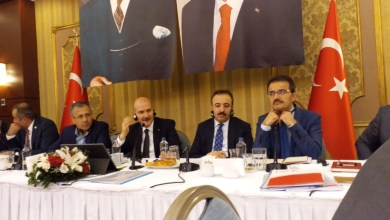 Photo of وزير الداخلية التركية يجيب عن إمكانية منح الجنسية التركية للأطفال الأجانب حديثي الولادة