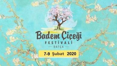 Photo of دعوة للاستمتاع بمهرجان أزهار اللوز السنوي في شبه جزيرة داتشا