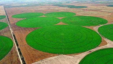 Photo of الواحد منها يعادل 50 ملعبا.. حقول دائرية عملاقة بتركيا