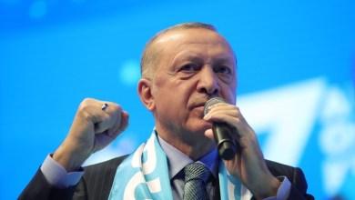 Photo of صحيفة: أردوغان يستعد لتوجيه ضربة مزدوجة لقوى البحر الأسود