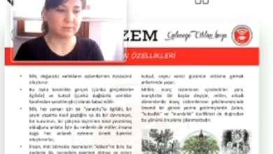 Photo of بالفيديو: أستاذة جامعية تركية تستخدم كلمة بذيئة ضد العرب وتصفهم بالخونة.. كيف رد الأتراك؟