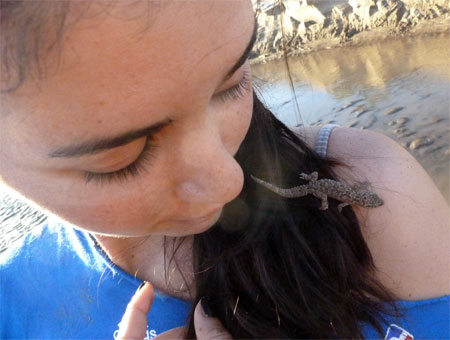 Marcela meets the Fat-Tailed Gecko
