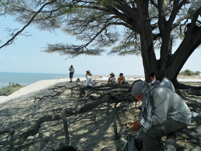 Picnic with a beautiful lake view under an ancient Acacia tree