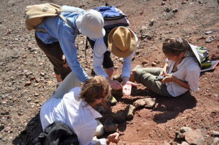 Meave and Dr. Skinner inspect some of the fossils Robyn and Kailie found.