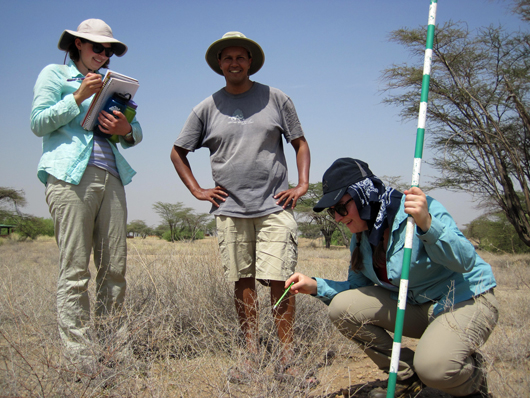 Studying the vegetation at TBI