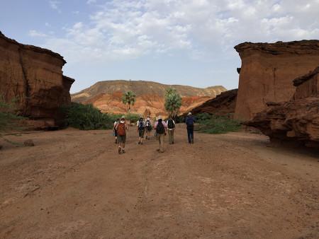 Long hike to the waterhole.