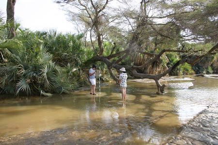 Aileen and Sam begin at the north bank of the Turkwel River near campus and begin recording the shallow depth of one channel with the Turkwel River.